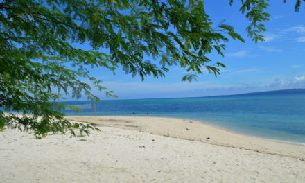 Quezon Province: Alibijaban Brought Happiness to Our Summer Plus Travel Guide