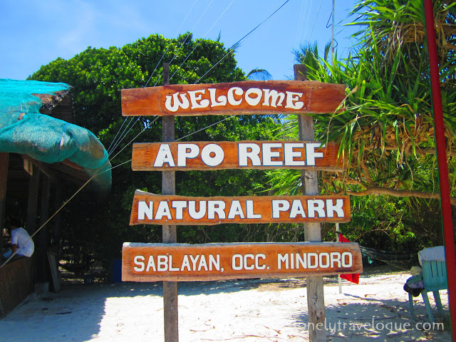 Sablay Sa Sablayan: The (Un) Sublime Underwater Experience in Apo Reef Marine Sanctuary