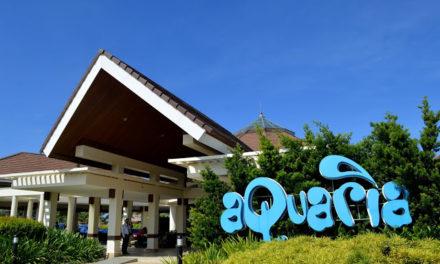 Aquaria Water Park: A Family Friendly Getaway in Calatagan Batangas