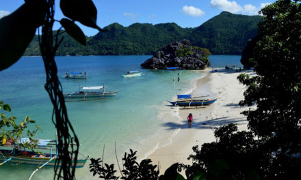 Matukad Island and the Lonely Milkfish