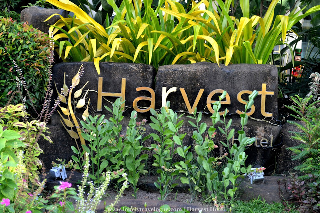Five Reasons to Stay at Harvest Hotel in Cabanatuan City