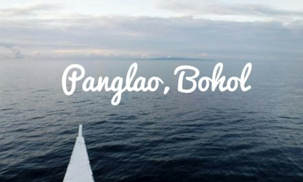 The Dolphins, the Fishes, the Corals and the Virgin Island of Panglao Bohol