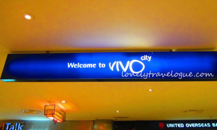 Vivo City and the Free Chinese Acrobat Show